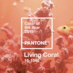 Living Coral o Coral Vivo, el color que marcará el 2019
